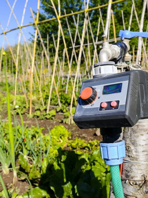 A Step-by-Step Guide on How to Set Up an Irrigation Timer